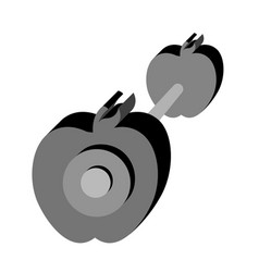 isolated dumbbell with apple shape vector image