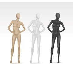 Isolated Female Mannequin vector image