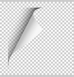 page with upper left curl with shadow on blank vector image