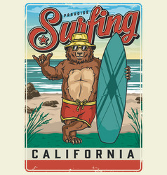surfing club vintage colorful poster vector image