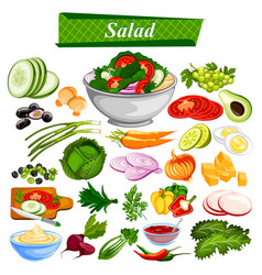 food and spice ingredient for healthy salad vector image vector image