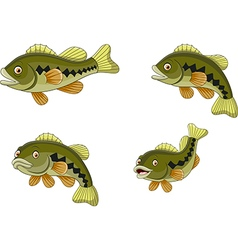 Cartoon funny bass fish collection vector