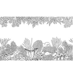 coral reef line horizontal pattern vector image vector image