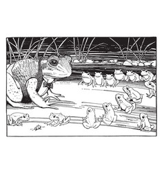 Frogs sitting in rows looking at frog in suit vector