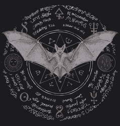 occult banner with a bat with open wings and star vector image