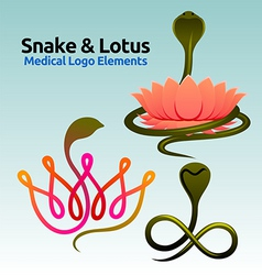 snake and lotus vector image