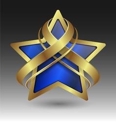 Elegant metallic star embleme with embellishment vector image vector image