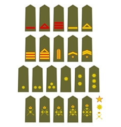 Insignia of the Spanish Army vector image vector image
