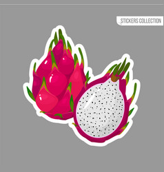 cartoon fresh red dragon fruit isolated sticker vector image