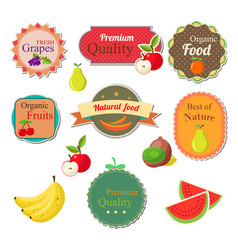 collection of fresh fruit labels badges and vector image