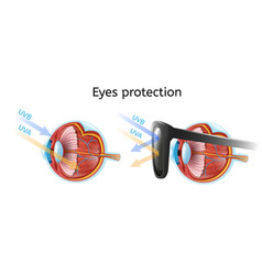 Eyes protection from harmful sun rays chart vector