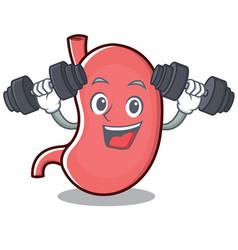 Fitness stomach character cartoon mascot vector