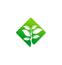 green tree icon logo vector image