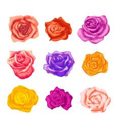 large set bright beautiful rosebuds in vector image