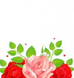 roses card vector image