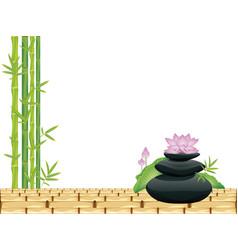 zen stones with lotus vector image
