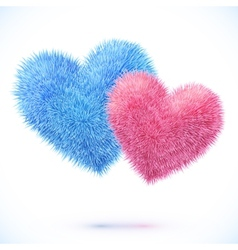 Blue and pink pair of hearts vector image
