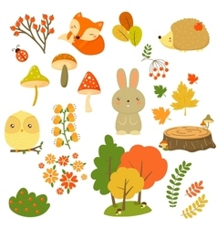Autumn Forest Plants and Animals vector image