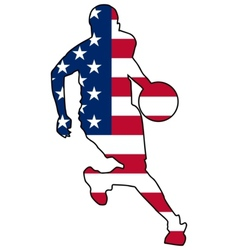 basketball colors of United States vector image