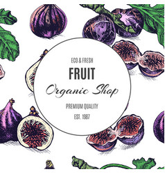 Hand drawn fruit pattern card with fig vector
