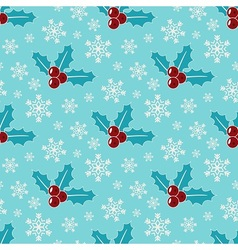 Mistletoe and snowflakes vector image