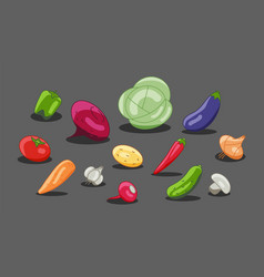 vegetarian menu made vegetables radish vector image