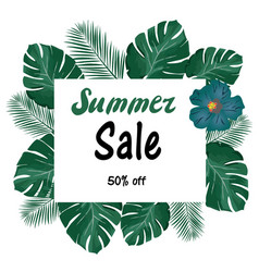 summer sale vector image