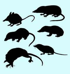 rat and mice silhouette vector image