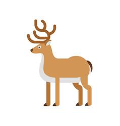 flat style of deer vector image