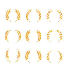 collection silhouette circular laurel foliate vector image