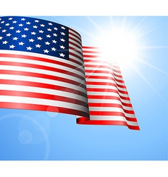 Flag of the United States vector