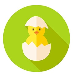 Hatched chicken in eggshell circle icon vector