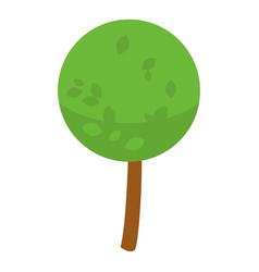 park tree icon isometric style vector image
