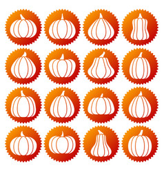 pumpkin white silhouette icon set vector image