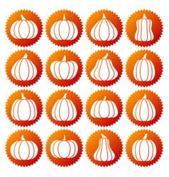 pumpkin white silhouette icon set vector image
