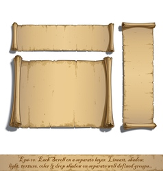 Three Cartoon Scrolls Lying Flat vector image vector image