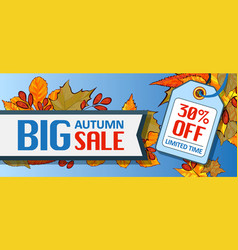 big autumn sale banner horizontal cartoon style vector image