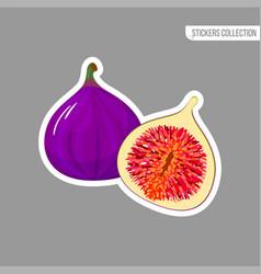 Cartoon fresh fig isolated sticker vector