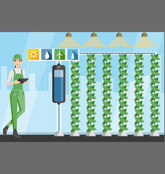 Farmer in greenhouse with vertical gardens vector