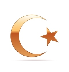 Gold Islam symbol icon on white background vector image