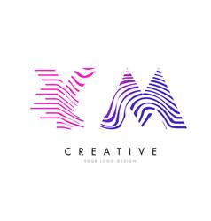 ym y m zebra lines letter logo design with vector image