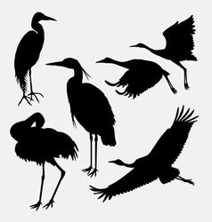 Stork heron egret and crane silhouette vector image vector image