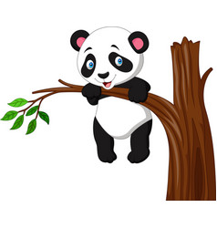Cartoon funny panda hanging on the tree vector