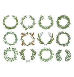 decorative flower wreaths set romantic blossom vector image