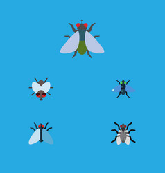 Flat icon fly set of fly housefly gnat and other vector