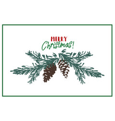 merry christmas tree spruce cone hand drawn branch vector image