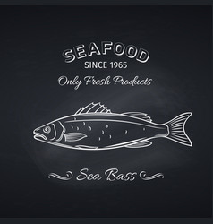 sea bass hand drawn icon vector image