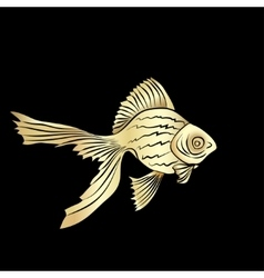Goldfish cards silhouette vector image