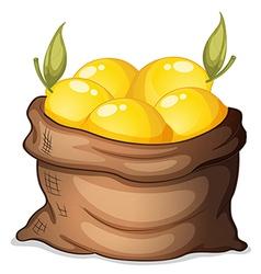 A sack of lemon vector image vector image