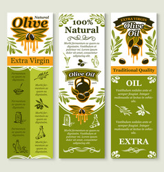 olives banners for organic olive oil vector image vector image